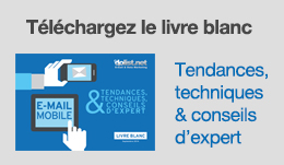 Etude EMA BtoC 2014 : les internautes français face à l'e-mail