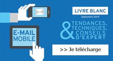 Livre Blanc Dolist E-mail Mobile