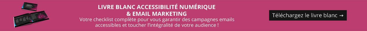 Livre blanc : accessibilité numérique & Email Marketing